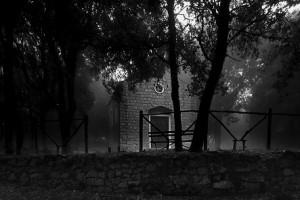Image © Patrizio Martorana